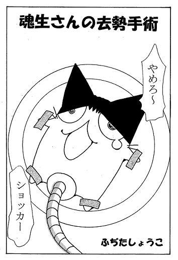 たまお1.jpg